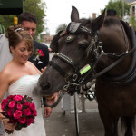 bride-and-horse3